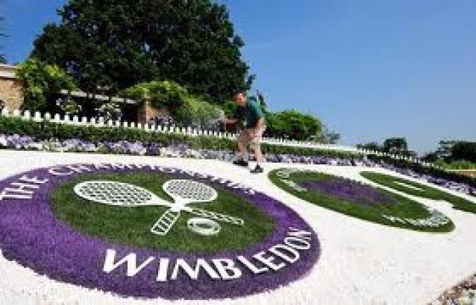 Scandalo a Wimbledon: plagiati gli annuari del torneo!