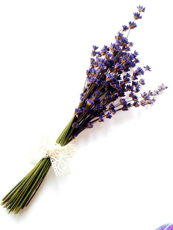 10 Pcs Natural Dried Flowers Craspedia Stick Wedding Party Home Floral Decor