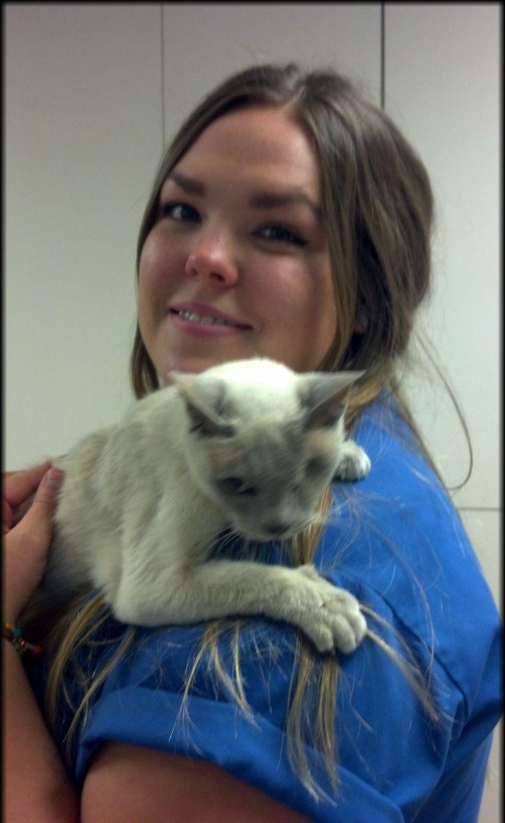 Meet Ashley Baranowsky, VCA Mesa Animal Hospital's Cat