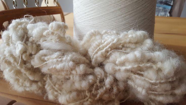 ChameleonWool: Walliser Schwarznase - Valais Blacknose Sheep