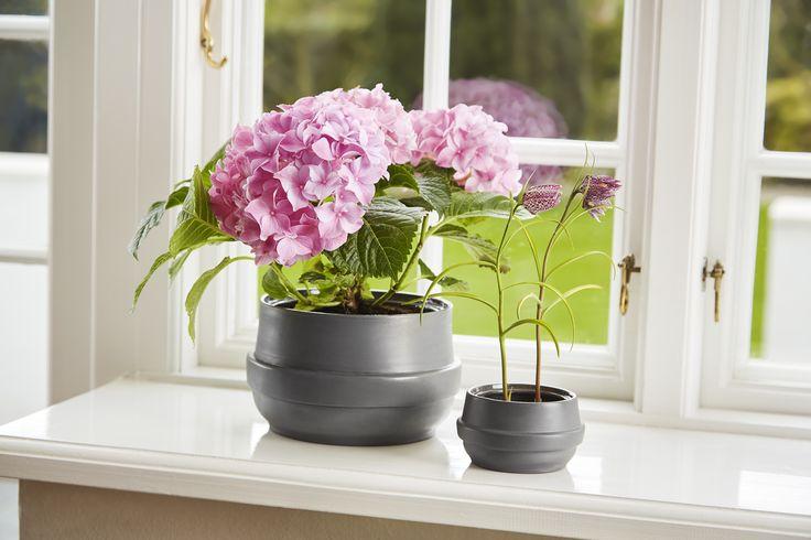 Spring inspiration (Springspiration) • Hinken pots • Designed by Silje Nesdal & Ann Kristin Einarsen #flowerpots #flowers #pots #spring #accessories #ceramic #norwegian #design #WOUDdesign