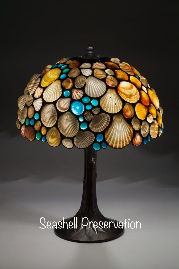 51 Best Sea Shell Lamp Shades Images On Pinterest Clam