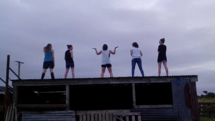 This picture is of me and four of my closest friends on top of the shed roof. We do almost everything together and are the closest of friends.