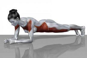 Plank: Come Avere Un Corpo Perfetto In 5 Minuti Al Giorno - Eticamente.net | Eticamente.net