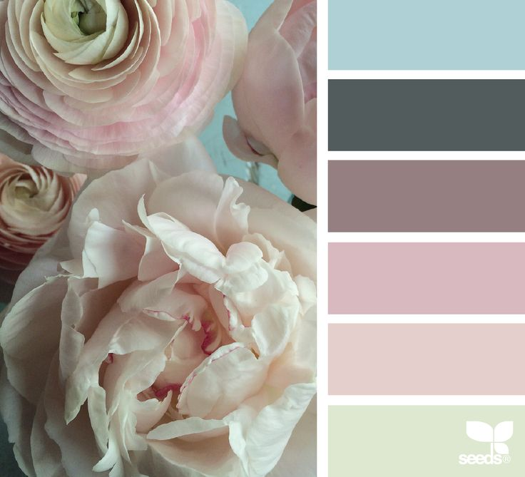 { flora hues } image via: @fairynuffflower