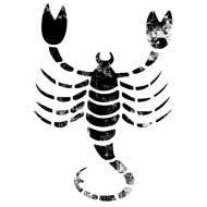sterrenbeeld-schorpioen eigenschappen horoscoop