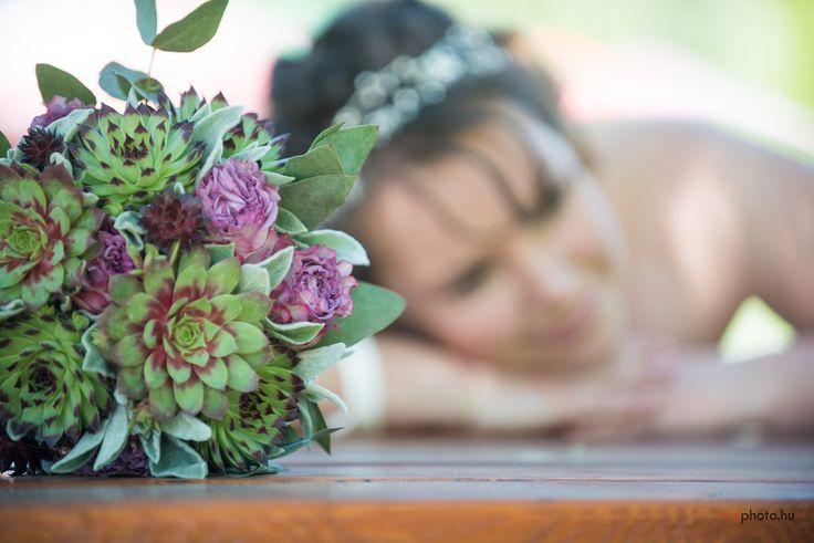 sempervivum wedding  / kövirózsa esküvő