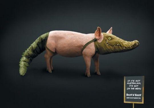Reef n' Beef: Pig