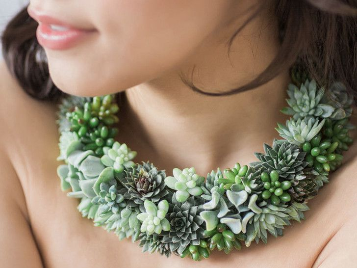 Beautiful!!!  Michigan-Based Floral Designer Turns Succulents Into Living Jewel...