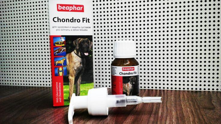 Kloubní výživa. Doplněk stravy BEAPHAR Chondro Fit 35ml najdete na webu www.bezednamiska.cz