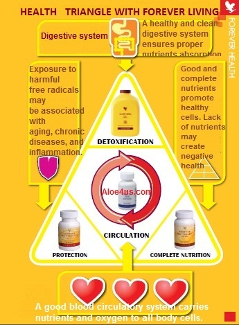 Basic nutritions for a healthy body: aloe vera gel, forever artic sea, bee propolis & forever bee pollen