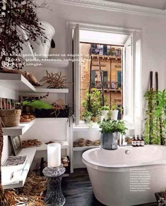Cool Bathroom Plants 26 best bathroom plants images on pinterest | bathroom ideas