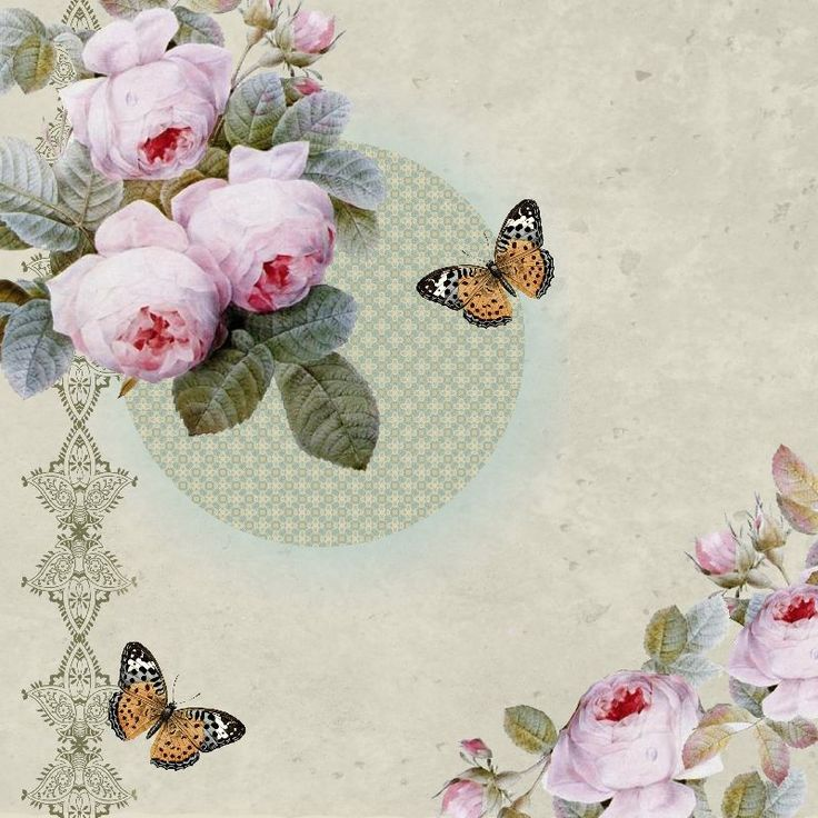 Transient Rose by aiysledesigns  fantasy romantic vintage butterflies flower rose floral butterfly abstract modern stylish pink foxes moon moonlight fashion illustration retro pretty beautiful