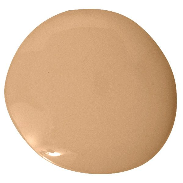 """""""Caramel is such a come-hither color — warm, relaxing, and a tiny bit fiery. It lures you in and enhances anything you put next to it, including people. I used it in my living room with a coat of polyurethane on top, to create a candlelit effect whether it's day or night. It's like ambience in a can."""" —Melissa Rufty   - HouseBeautiful.com"""