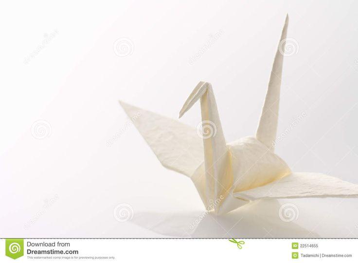 What is Peace? I Wonder.............   White oragami crane -
