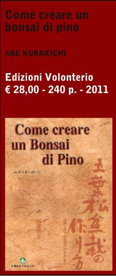 Benvenuti in Bonsai Suiseki Magazine