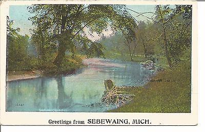 M-16383-Greetings-From-Sebewaing-Michigan-1923