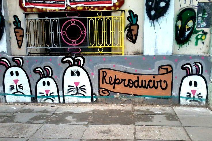 Buenos Aires - Palermo  -  2012