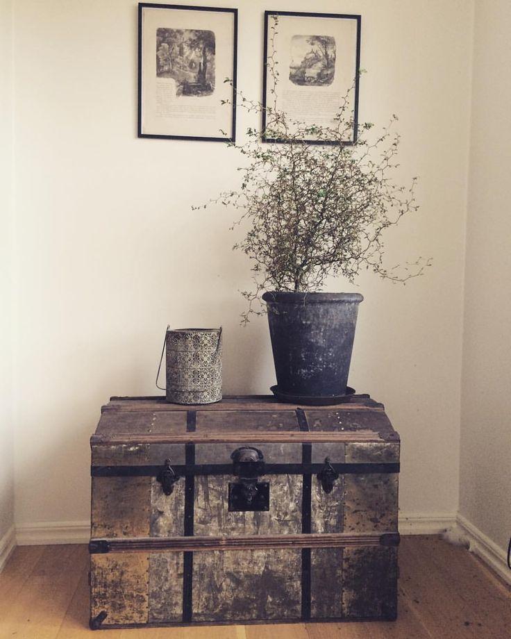 Älskar denna del av vardagsrummet och särskilt min gamla koffert #sophora #gamalkoffert #myshörna