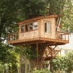 rumah pohon-6