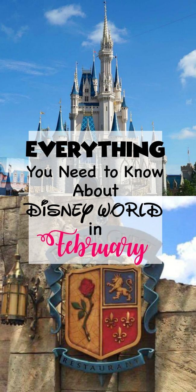 Five tips to help you plan an awesome trip to Disney World in February! disney world in february, disney world in february 2017, disney world in february what to wear to, disney world in february what to pack, disney world in february travel, disney world in february trips, disney world in february hollywood studios, disney world in february epcot, disney world in february parks, disney world in february animal kingdom, disney world in february kids, disney world in february fun, disney…