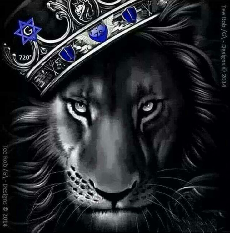 Lion With Crown Wallpaper Lion With Crown Tattoo Design: 30 Best Sexy Leo Tattoos With Crown Images On Pinterest
