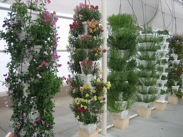 17 best images about home hydroponics on pinterest for Hydro gardens
