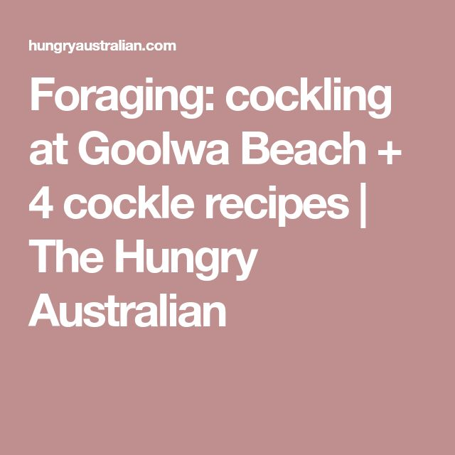 Foraging: cockling at Goolwa Beach + 4 cockle recipes | The Hungry Australian
