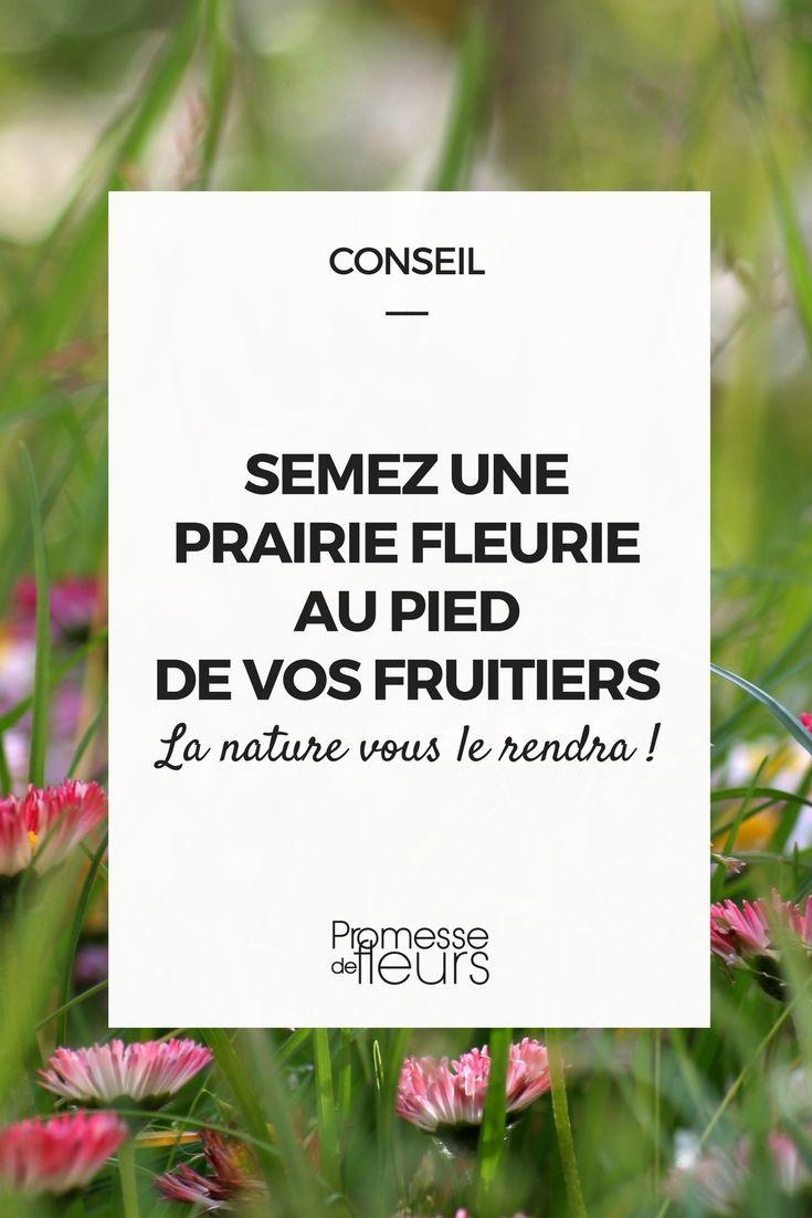 #arbrefruitier #verger #abeille