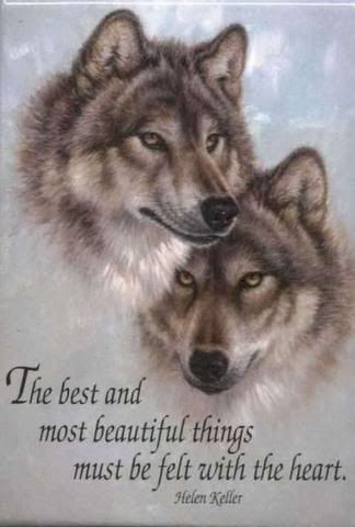 """The best and most beautiful things must be felt with the heart."""