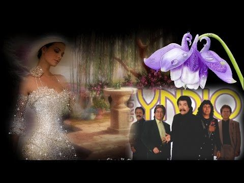 Los Pasteles Verdes - Grandes Exitos Mix - YouTube