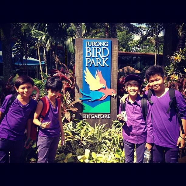 Coboy Junior at Singapore ( Jurong Bird Park)