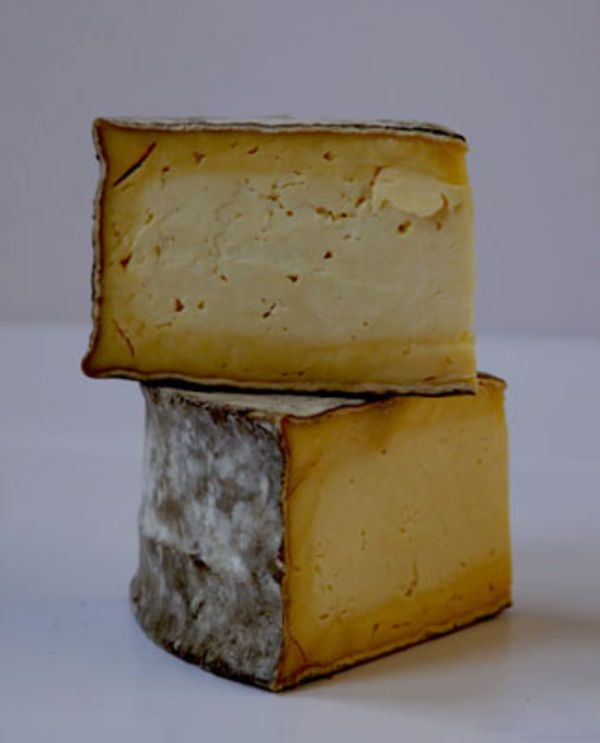 Caerphilly, a fresh cows' milk cheese, makes a comeback.