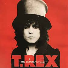 Image result for t rex images marc bolan