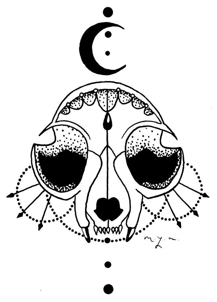 Cat Skull Under Moonlight