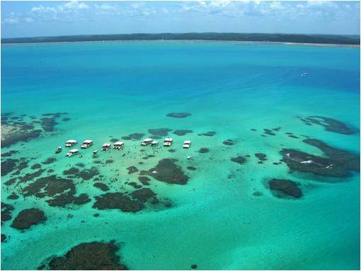 MARAGOGI EN BRASIL- Saliendo de Maceió en dirección norte sobre el litoral de Alagoas se encuentra la ciudad de Maragogi con sus paradisiacas playas. Estas se caracterizan por tener arena blanca y fina, olas suaves y arrecifes con una gran biodiversidad. Con la marea baja se forman piscinas naturales. Las más conocidas se llaman Croas (a 5 km de la costa) y Galés (a 6km). Balsas y barcos llevan a los turistas hasta allí. Un verdadera maravilla de la naturaleza.