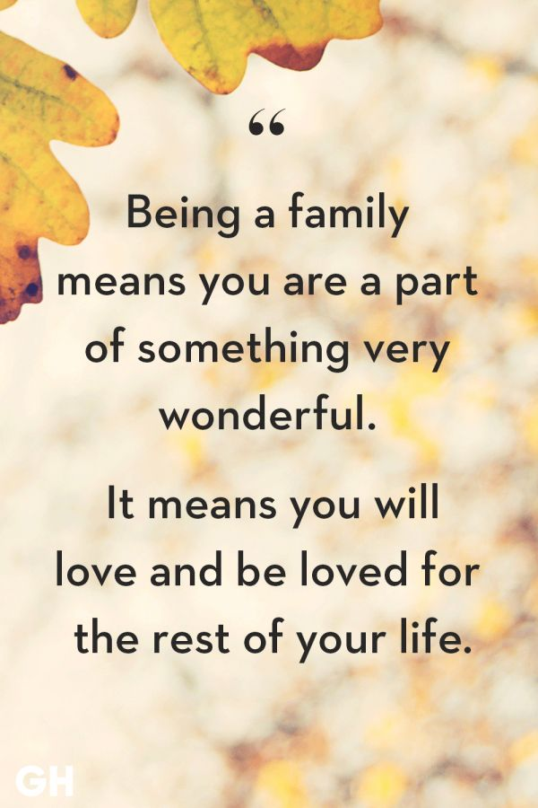 12 Love For The Family Quotes Family Quote Quoteslife99 Com In 2020 Family Quotes Inspirational Family Love Quotes Love My Family Quotes
