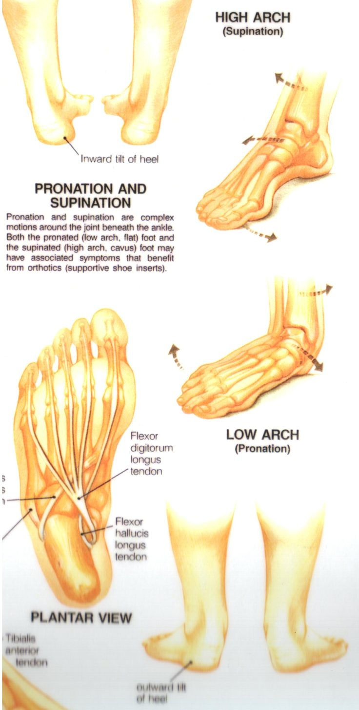 375 best Podiatry images on Pinterest | Physical therapy, Massage ...