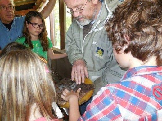 Hortus houdt in het kader van de Landelijke Open Imkerijdagen diverse activiteiten rondom bijen.