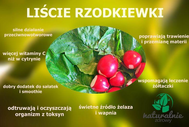 liście rzodkiewki, właściwości