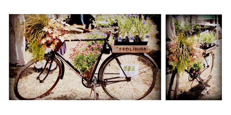 How Green Nursery, Hever - on display at Wealden Times Midsummer craft fair