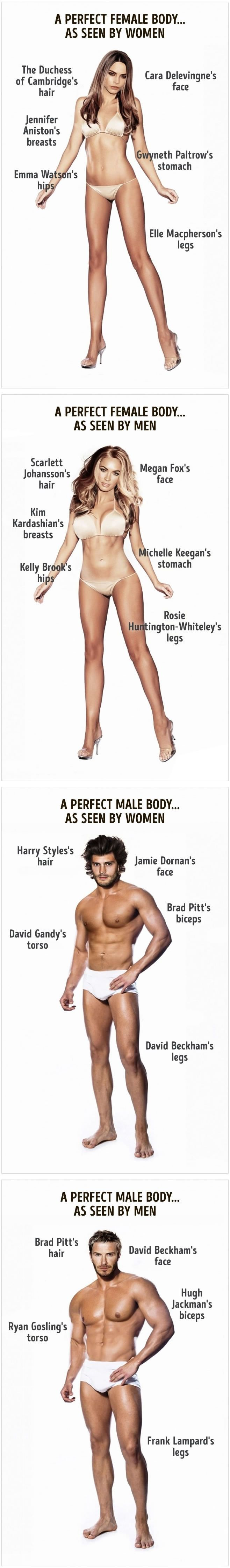 How a perfect body looks as seen by men and women - 9GAG