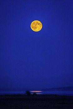 Art Calapatia - Moonrise Reflection 2