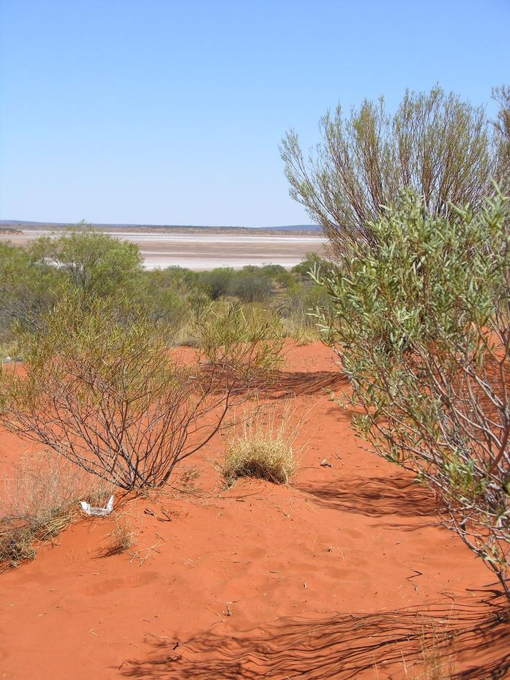 Kings Canyon, Alice Springs, NT, Australia