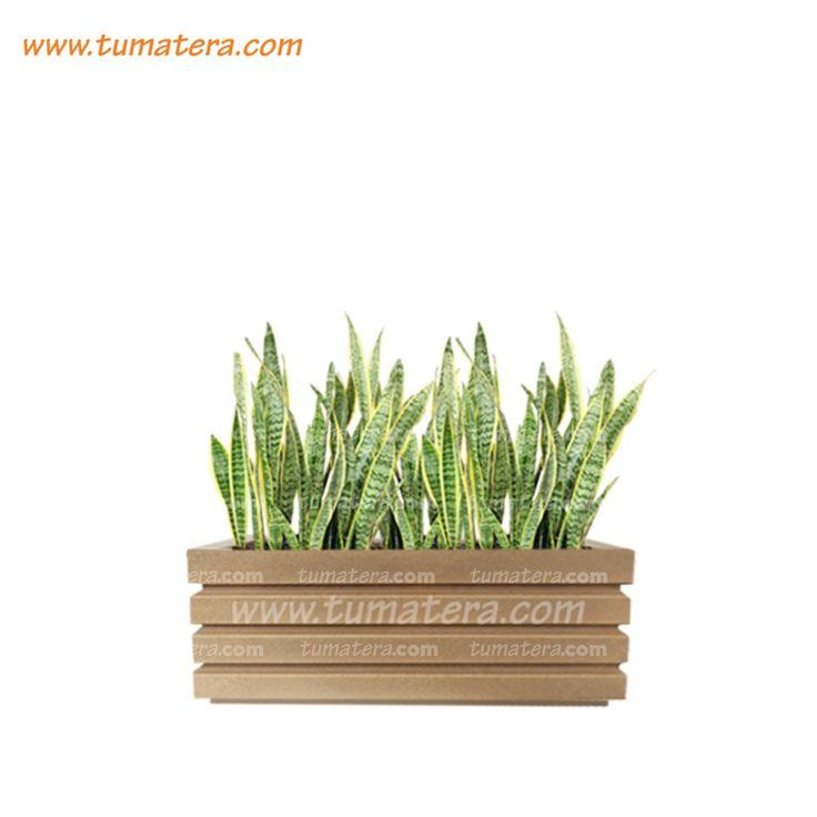 Encuéntralas en: https://www.tumatera.co/products/combo-jardinera-90cm-con-sanseviera/