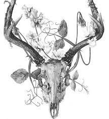 Resultado de imagen para dibujos de cabezas venados