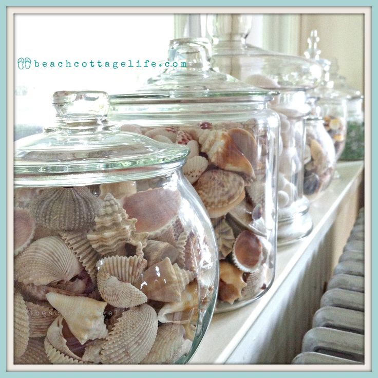 Coastal Home Decor. Shells, Sea Urchins, Sea Glass Collections In  Apothecaries On Windowsill