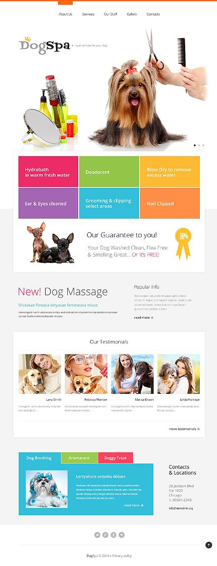 196 best Website templates screenshots images on Pinterest - diabetes brochure template