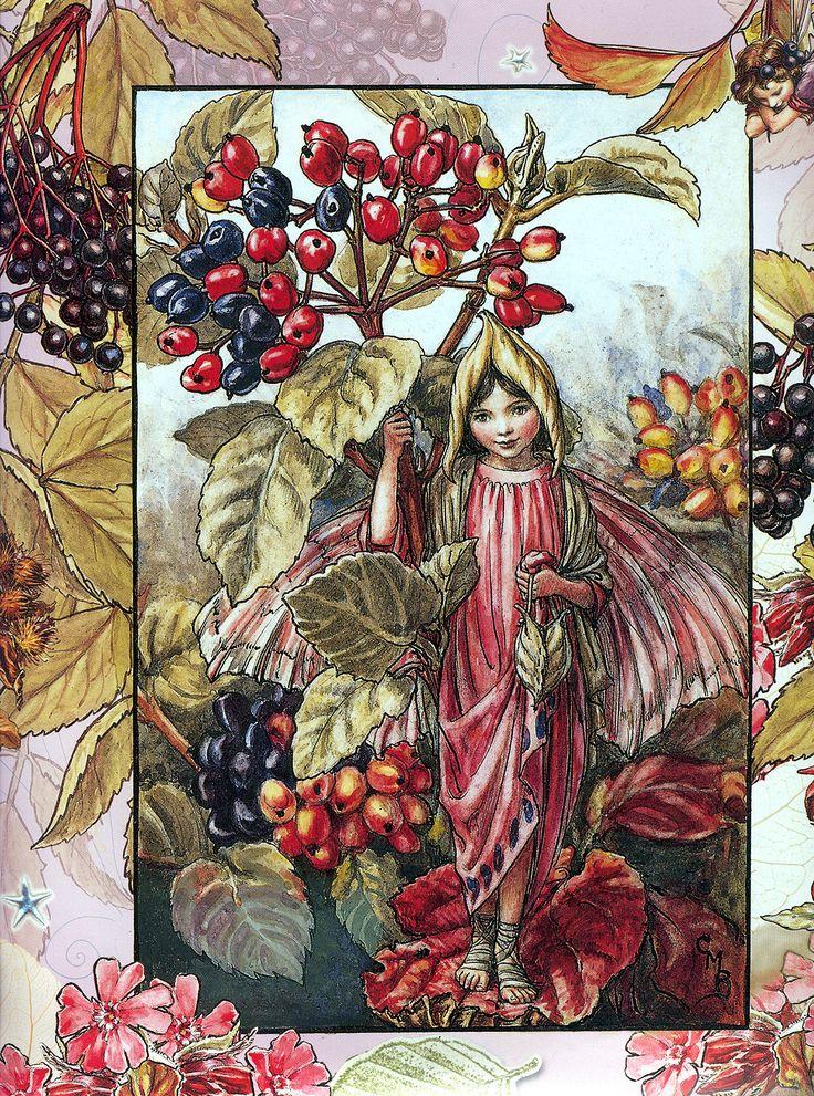 Cicely Mary Barker (1895–1973) - the wayfaring tree fairy