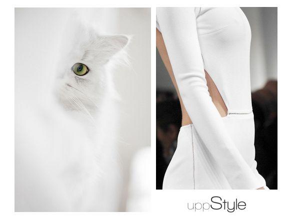 #uppstyle #white #biały